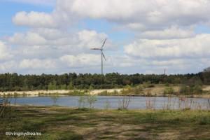 Baggersee - wird renaturiert