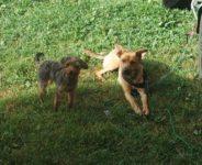Lina und Lene
